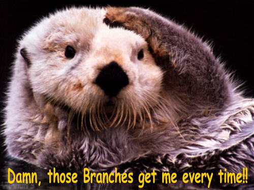 beaver, biva funny
