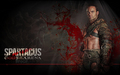 spartacus gods of the arena - spartacus-blood-and-sand wallpaper