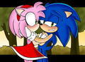 ....Hey,Amy? I have something to tell you - sonic-and-amy photo