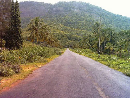 A Village Road in Kerala