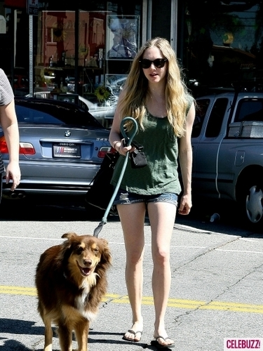 Amanda Seyfried's Dog hari Afternoon (PHOTOS)