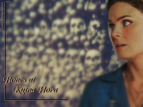 Bones at Kutna Hora