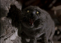 Church - pet-sematary photo