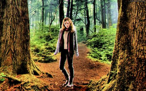Emma Watson (Hermione) Wallpaper