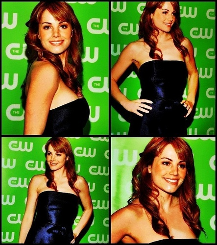 Television wallpaper with a portrait called Erica Durance