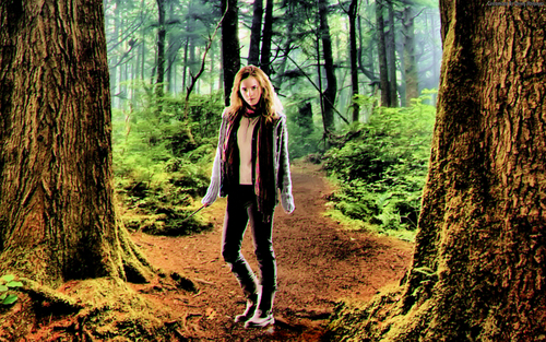 Hermione (Emma Watson) karatasi la kupamba ukuta