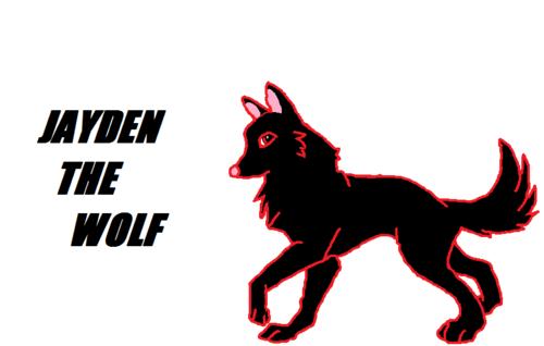 Jayden The wolf (me)