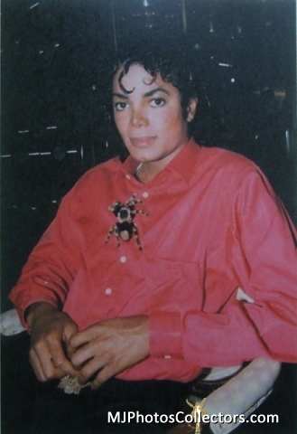 http://images4.fanpop.com/image/photos/20000000/MJ-with-animals-and-friends-michael-jackson-20011504-329-480.jpg