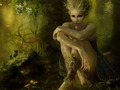 MagiCal CreAturE - magical-creatures wallpaper