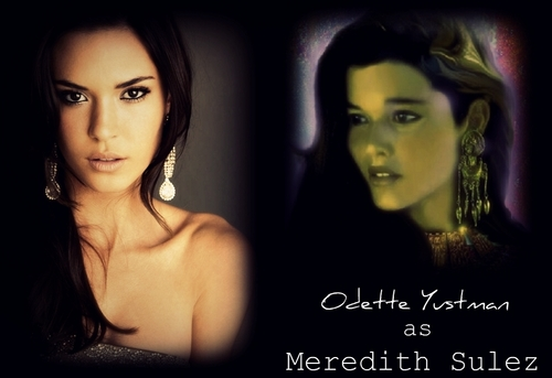Odette Yustman as Meredith