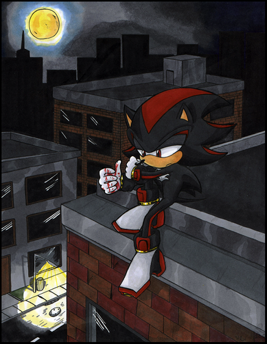 Shadow The Hedgehog wallpaper probably containing a sign and a family room titled Shadow