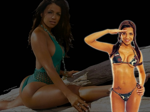 Vida Guerra wallpaper with a bikini and a swimsuit titled Vida Guerra