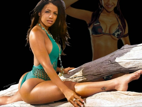 Vida Guerra پیپر وال possibly with a bikini entitled Vida Guerra