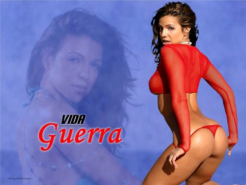 Vida Guerra wallpaper possibly containing a maillot called Vida Guerra