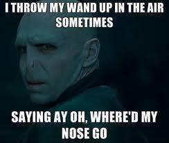 Harry Potter Vs. Twilight wallpaper containing anime called Voldemort lyrics