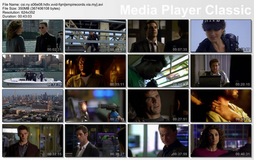 CSI new york season 6