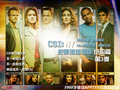csi new york wallpaper in chinese - csi-ny wallpaper