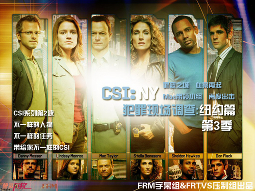 csi new york wallpaper in chinese