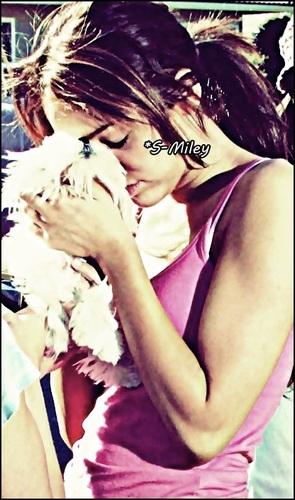 *S-Miley