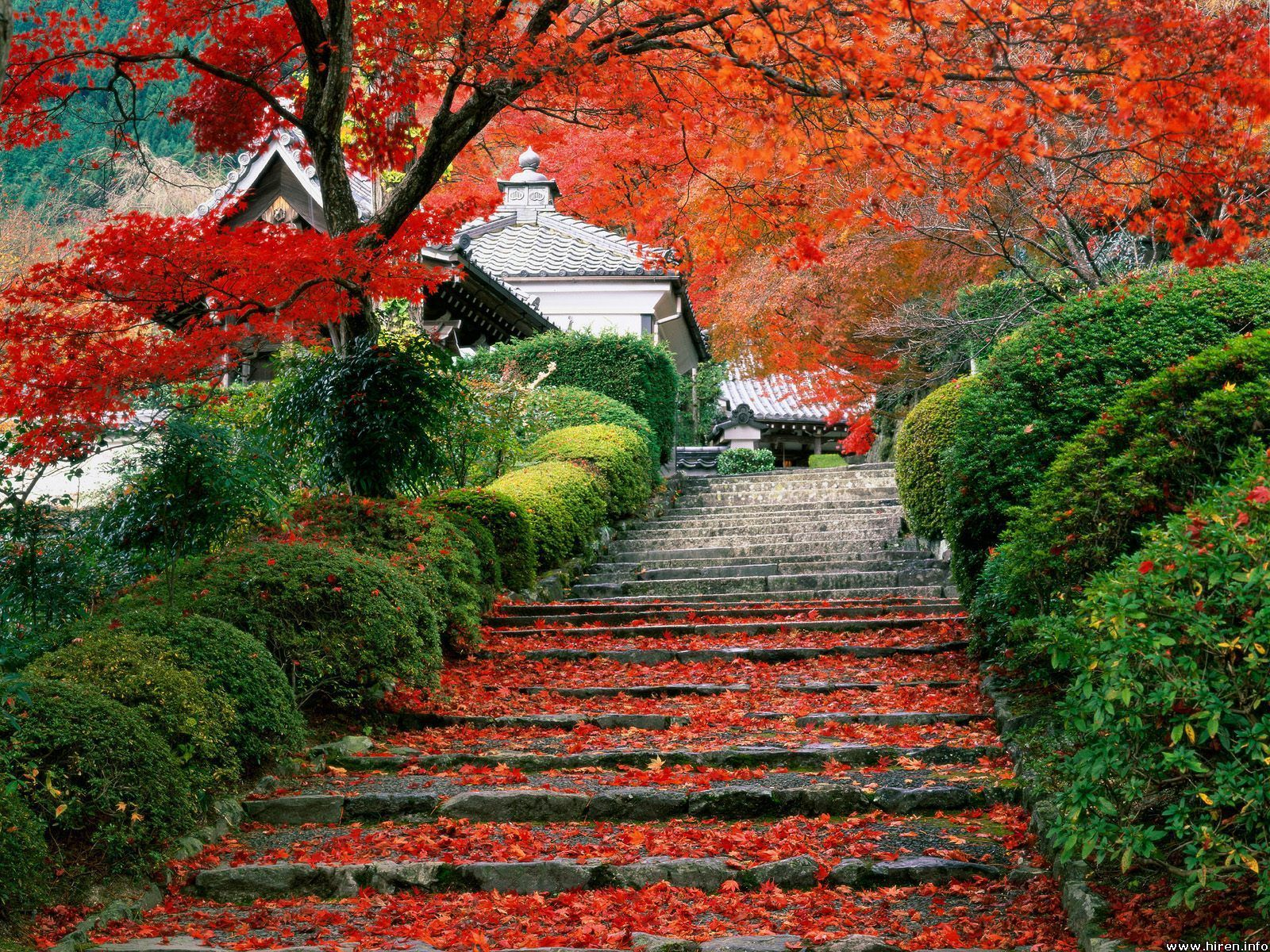 Beautiful Japan Photo in addition 7 Clever Retaining Wall Ideas further 65332 Enclosed Covered Patio Ideas Patio Craftsman With Modern Landscape Modern Fireplace Modern Landscaping together with Stupendous Outdoor Wall Fountains Clearance Decorating Ideas Gallery In Patio Mediterranean Design Ideas moreover 6 Brilliant Inexpensive b 7706234. on traditional home landscaping ideas