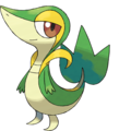 1 Of The Starter Pokemon - pokemon-the-unova-region photo