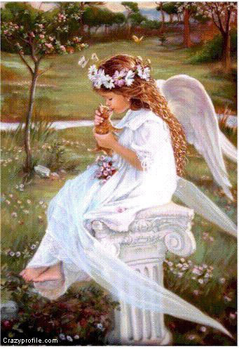 Sweet Angel - angels Photo