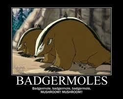 Badgermoles