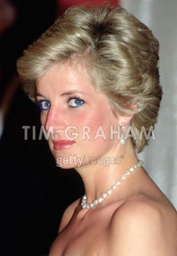 Diana In Cameroon