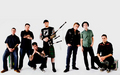 Dropkick Murphys - 2008 - dropkick-murphys wallpaper