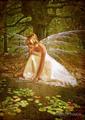 Fairy - fairies photo