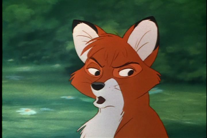 What Does the Fox Say Fox