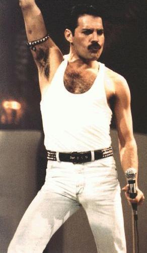 queen fondo de pantalla probably with a postigo, wicket entitled Freddie Mercury(Queen)