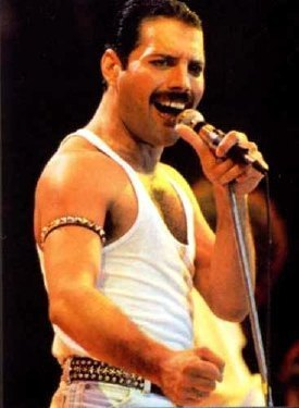 Queen wallpaper probably with a concert entitled Freddie Mercury(Queen)