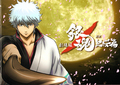 Gin - gintama photo