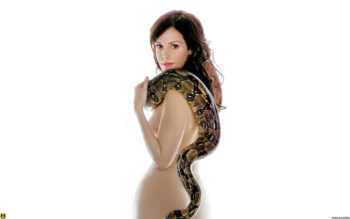 Mary-Louise Parker wallpaper with a boa, a python, and a constrictor entitled Mary-Louise Parker Wallpaper