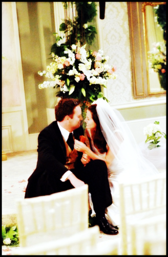 Monica and Chandler wallpaper containing a bouquet called Mondler