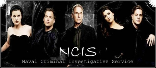 NCIS wallpaper containing a portrait called NCIS Banner