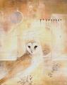 Owls by Susan Seddon Boulet