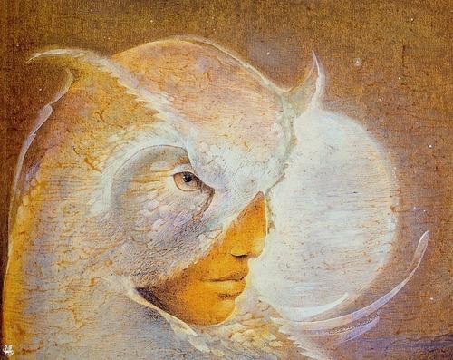 Owls fond d'écran with a triceratops called Owls par Susan Seddon Boulet