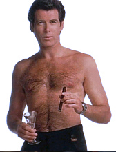 PIERCE BROSNAN SHIRTLESS PICTURS