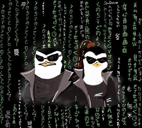 penguin, auk Matrix