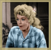 The Beverly Hillbillies wallpaper probably with a portrait called Pretty Elly May
