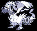 Reshiram - pokemon-the-unova-region photo