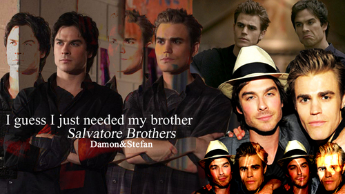 Damon and Stefan Salvatore پیپر وال called Salvatore Brothers