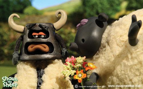 Shaun The con cừu, cừu