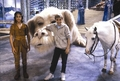 The NeverEnding Story 2 - jonathan-brandis photo