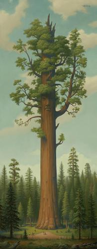 The дерево Показать