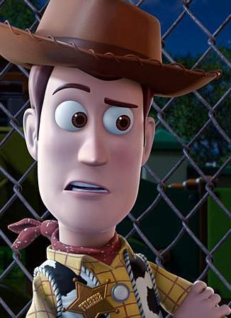 Toy Story Hintergrund containing a chainlink fence, a fedora, and a boater entitled Various Woody pics
