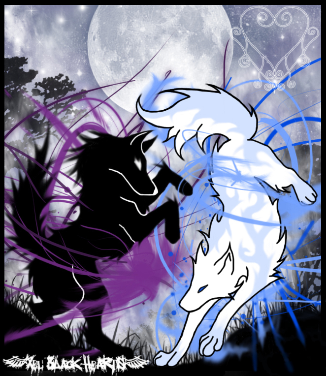 The anubian s wolf pack wolves