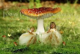 fairys an mushrooms